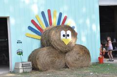 Hay Bale turkey.jpg