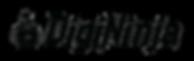 digininja transparent long logo.png