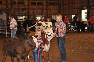 Jr Fair Beef breeding show.jpeg