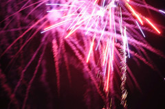 fireworks pink.jpeg