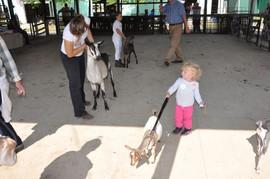 toddler and pygmy.jpeg