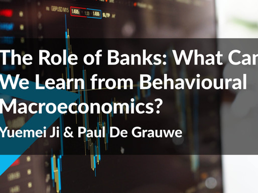 The Role of Banks: What Can We Learn from Behavioural Macroeconomics?