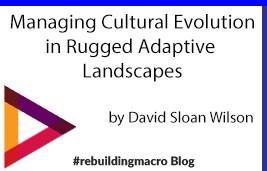 Managing Cultural Evolution in Rugged Adaptive Landscapes
