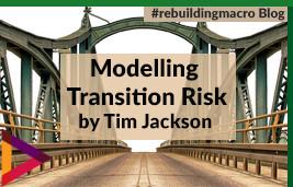 Modelling Transition Risk