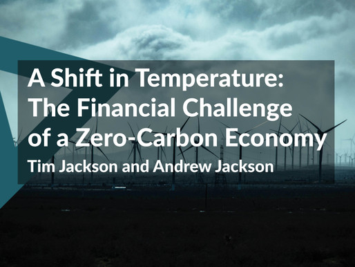 A Shift in Temperature: The Financial Challenge of a Zero-Carbon Economy