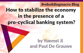 How to Stabilize the Economy in the Presence of a Pro-Cyclical Banking System?