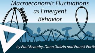 Macroeconomic Fluctuations as Emergent Behaviour