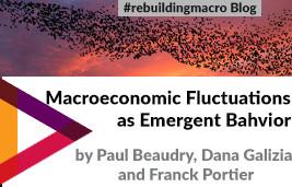 Macroeconomic Fluctuations as Emergent Behavior