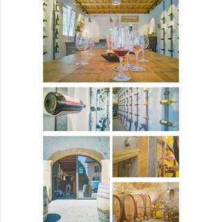 """Reportage """"Wein Degustation"""". Bilder und Text: Mattia Coda; Bieler Tagblatt"""