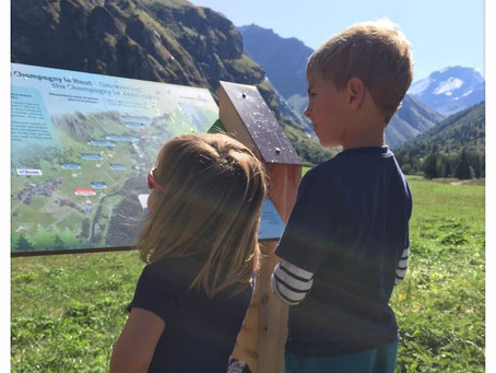 Que faire en vacances? ...en limitant son impact écologique voir en faisant du bien à la planète!