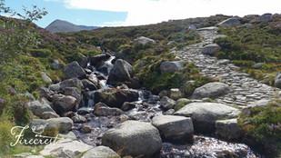 Cairngorm Stream