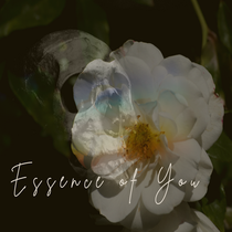 Vickie Davies Releases New Single - 'Essence of You'