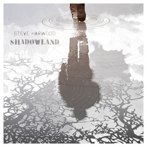 Steve Harwood Releases New Single -  'Shadowland'