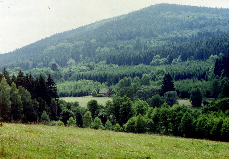 Neubau-Panorama-.jpg