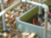 DSCN2814 small.jpg