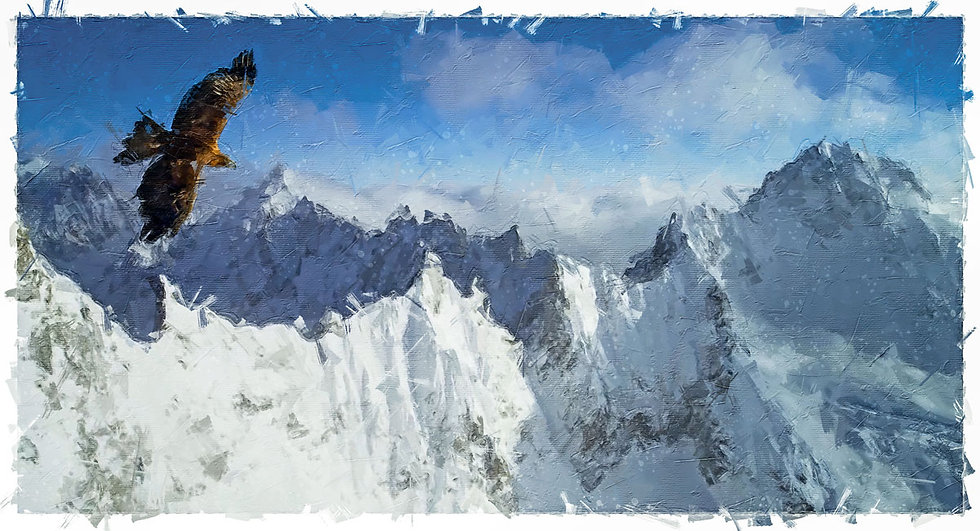 «High up in The Sky» – price from