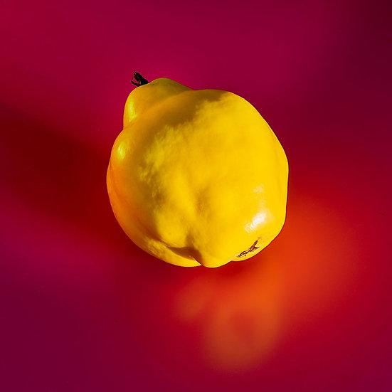 «Quince Fruit» – Photoimage