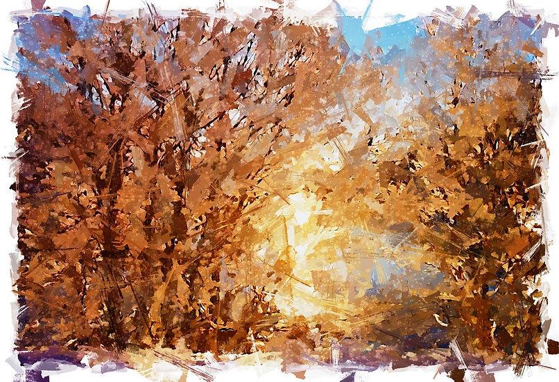 «Winter Sun» – price from