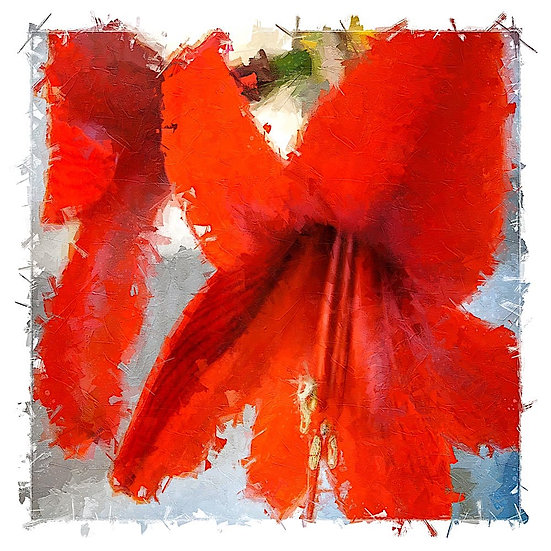 «Red Lily» – price from