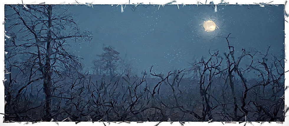 «Night Landscape» – price from