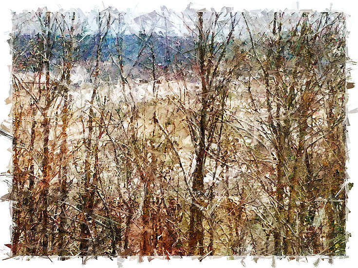 «From The Window» – price from
