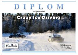 DIPLOM-CID