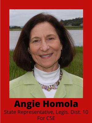 Angie Homola