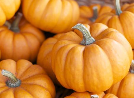 FALL NUTRITION - Pumpkin Season is Here!