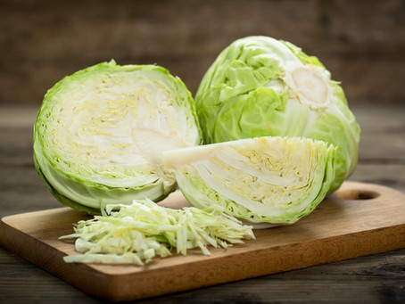 FALL NUTRITION - Cabbage