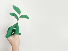 3 biggest ways that Fashion Companies can positively impact the environment and their bottom line.