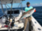 FISH_WINCH®_2.0_-_Amberjack.jpeg