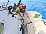 Marlin caught with electric fishing reel