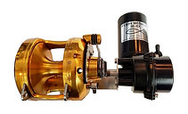 Electric fishing reel by FISH WINCH