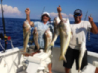 Electric fishing reel and several tilefish