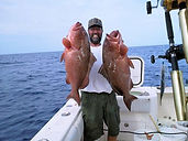 Two red grouper caught with electric reels