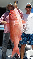 Fishing with electric fishing reels in Mauritius