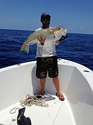 Golden tilefish caught with electric fishing reel