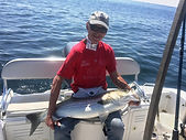 Striped bass caught on electric reel.JPG