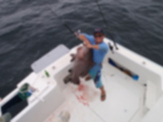 Electric fishing reel and grouper fish