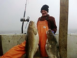 Cod fishing with electric reel