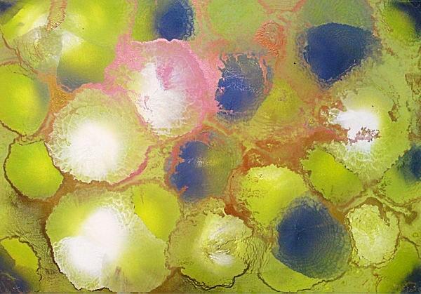 Chlorophyll 2 100x70cm