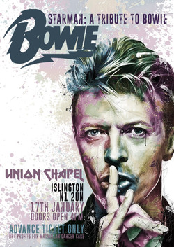 BOWIE TRIBUTE POSTER