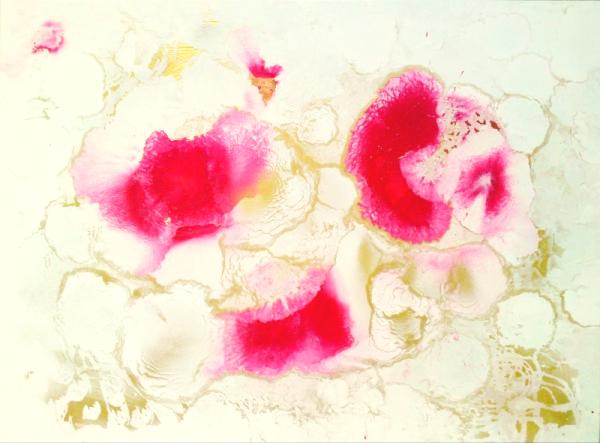 Rose 2 (100 x 70cm)_Fotor