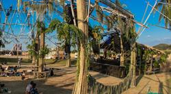 WONDERFRUIT 2019 PLANT DECOR
