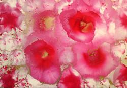 Rose 4 100x70cm