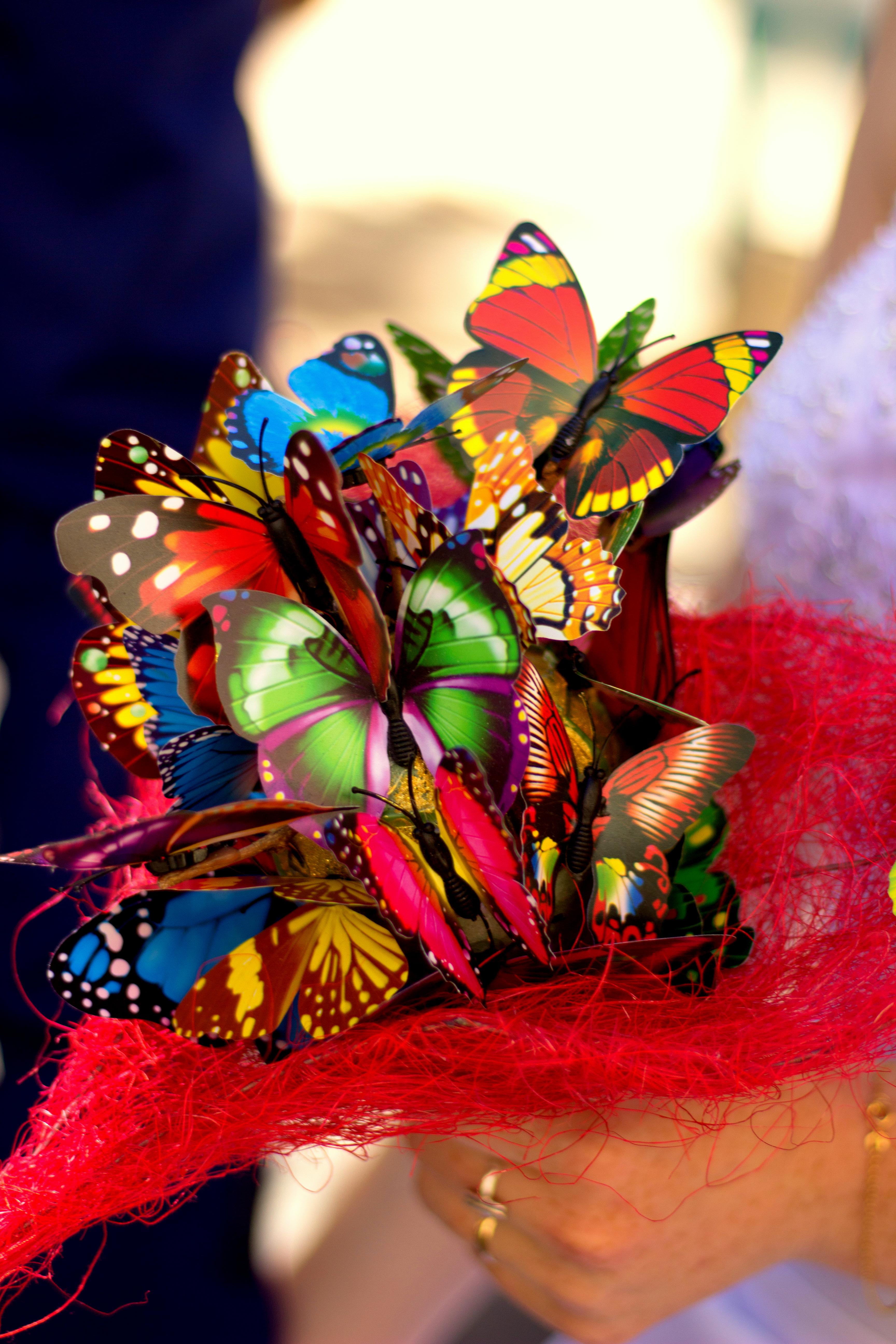 Bouquet éternel papillon