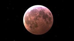 mw-superblood-moon-1548195995