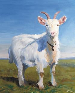 white-goat-mike-jory