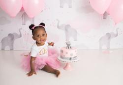 First Birthday Milestone