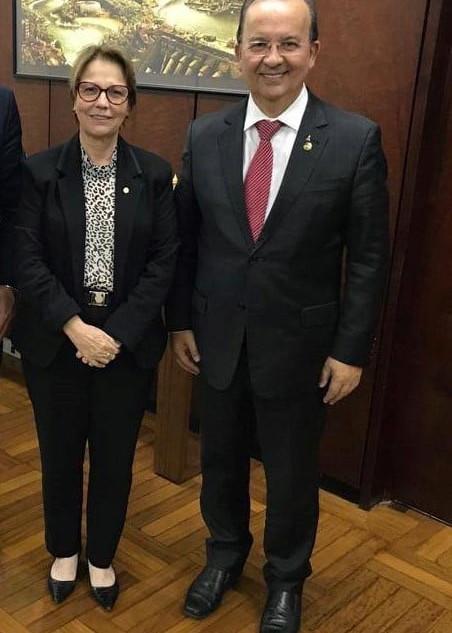 Ministro da Agricultura Tereza Cristina
